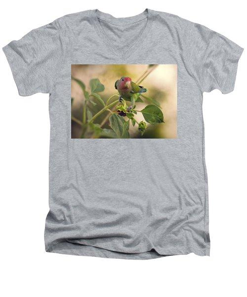 Lovebird On  Sunflower Branch  Men's V-Neck T-Shirt by Saija  Lehtonen