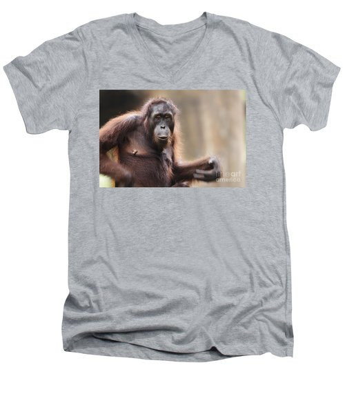 Orangutan Men's V-Neck T-Shirt by Richard Garvey-Williams