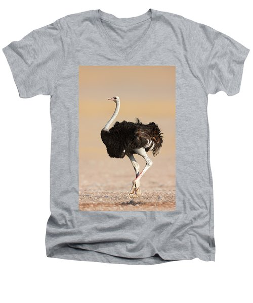 Ostrich Men's V-Neck T-Shirt by Johan Swanepoel
