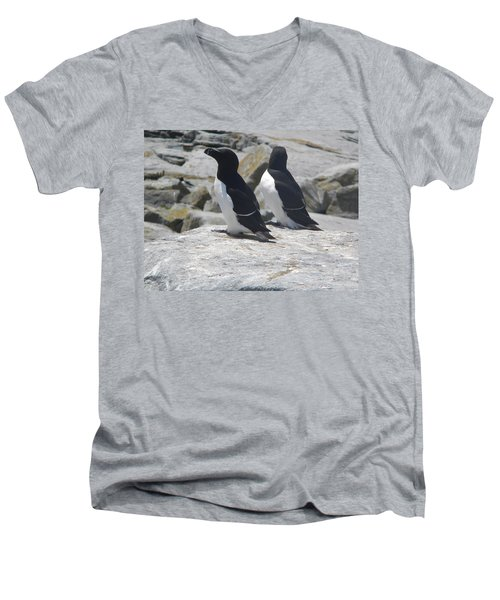 Razorbills 2 Men's V-Neck T-Shirt by James Petersen