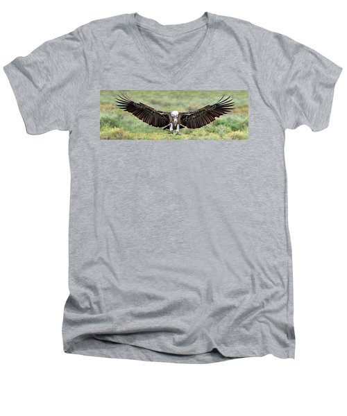 Ruppells Griffon Vulture Gyps Men's V-Neck T-Shirt by Panoramic Images