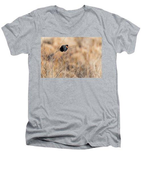 Springtime Song Men's V-Neck T-Shirt by Bill Wakeley