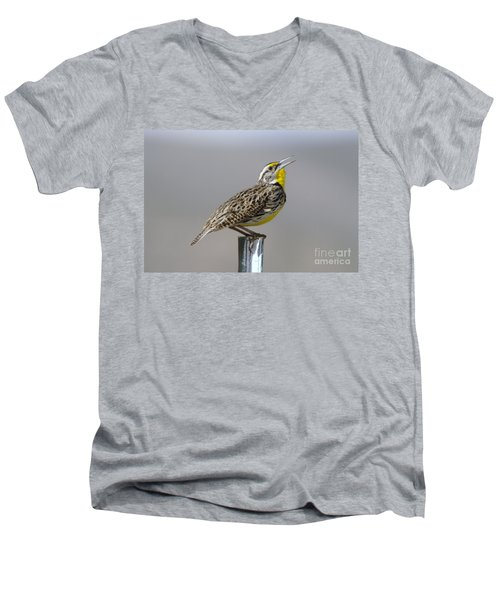 The Meadowlark Sings  Men's V-Neck T-Shirt by Jeff Swan