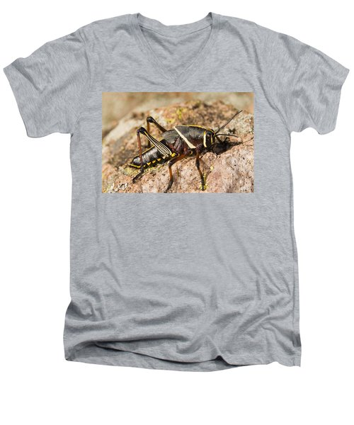 A Colorful Lubber Grasshopper Men's V-Neck T-Shirt by Jack Goldfarb