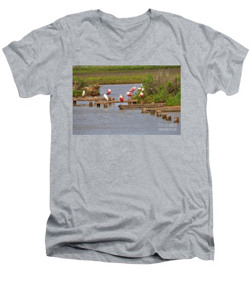 Roseate Spoonbills And Snowy Egrets Men's V-Neck T-Shirt by Louise Heusinkveld