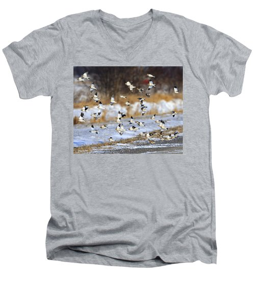 Snow Buntings Men's V-Neck T-Shirt by Tony Beck
