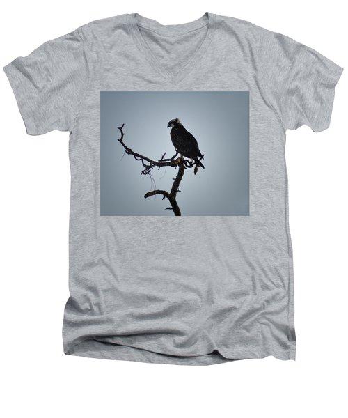 The Osprey Men's V-Neck T-Shirt by Bill Cannon