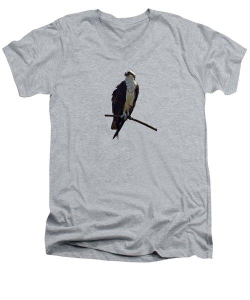 Osprey Men's V-Neck T-Shirt by Deborah Good