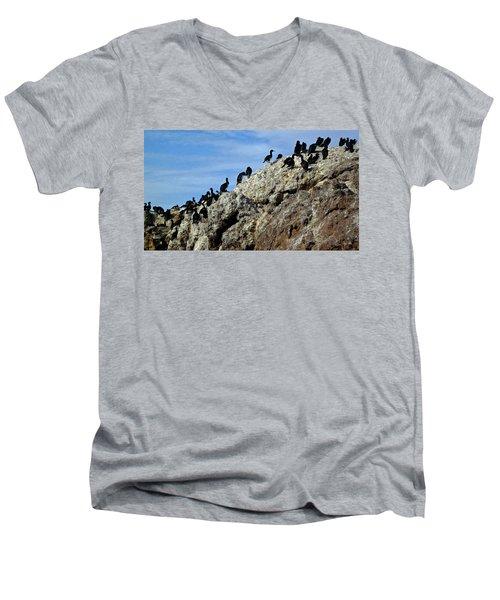 A Gulp Of Cormorants Men's V-Neck T-Shirt by Sandy Taylor