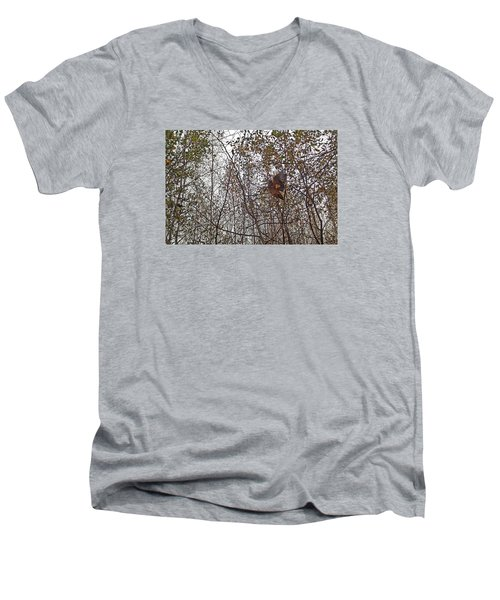 American Woodcock In October Foliage Men's V-Neck T-Shirt by Asbed Iskedjian