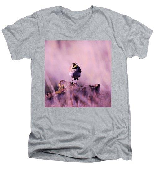 An Searching Gaze  Men's V-Neck T-Shirt by Jeff Swan