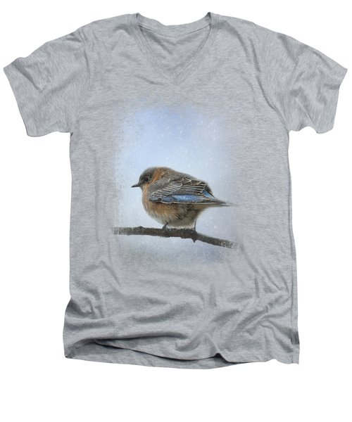 Bluebird In The Snow Men's V-Neck T-Shirt by Jai Johnson