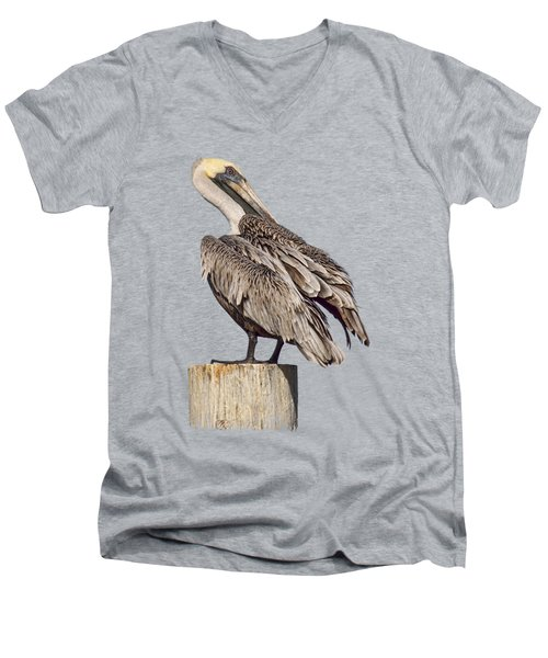 Brown Pelican - Preening - Transparent Men's V-Neck T-Shirt by Nikolyn McDonald