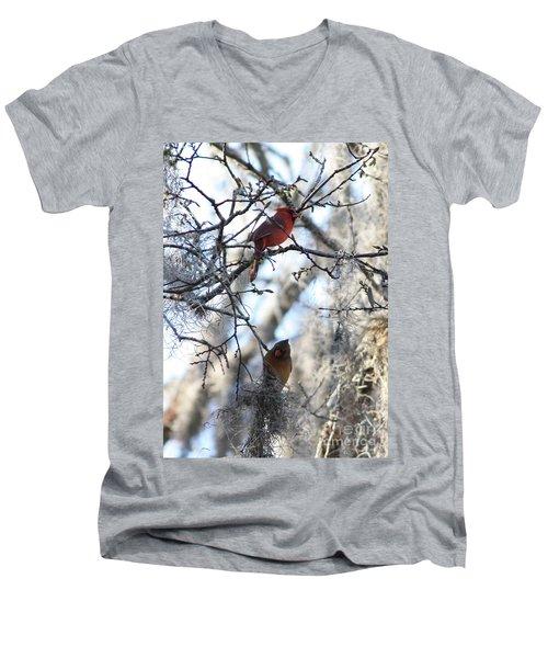 Cardinals In Mossy Tree Men's V-Neck T-Shirt by Carol Groenen