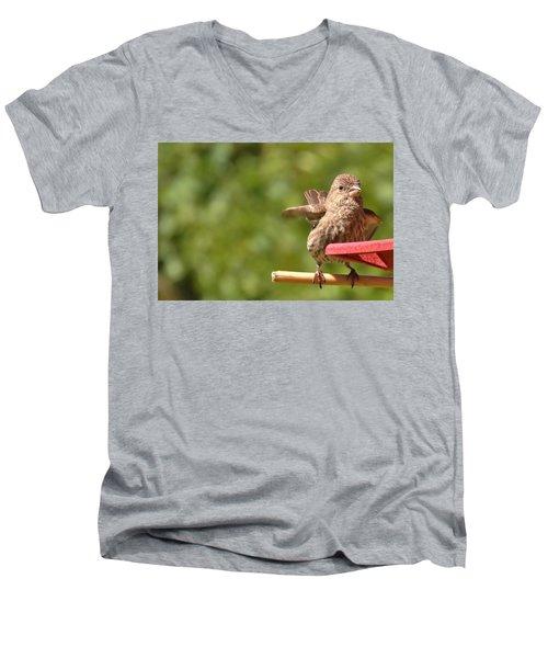 Crossbill Female At Feeder        Summer       Indiana Men's V-Neck T-Shirt by Rory Cubel