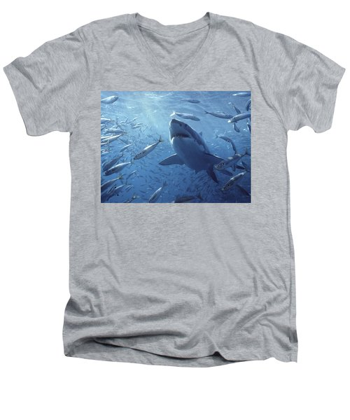 Great White Shark Carcharodon Men's V-Neck T-Shirt by Mike Parry