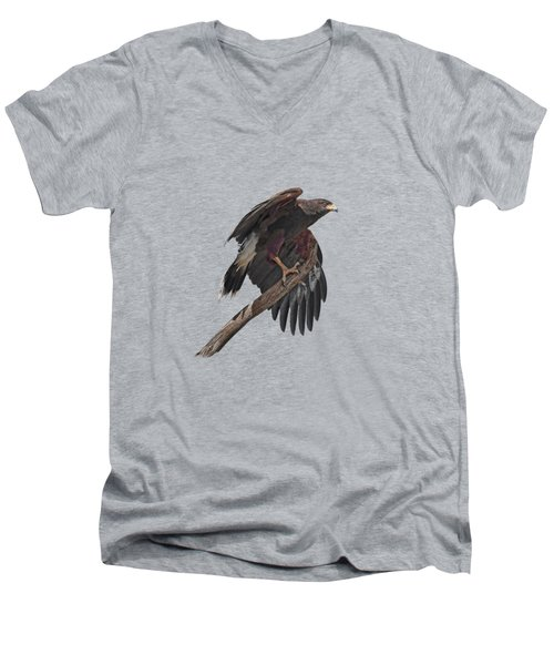 Harris Hawk - Transparent Men's V-Neck T-Shirt by Nikolyn McDonald
