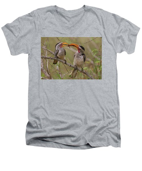 Hornbill Love Men's V-Neck T-Shirt by Bruce J Robinson