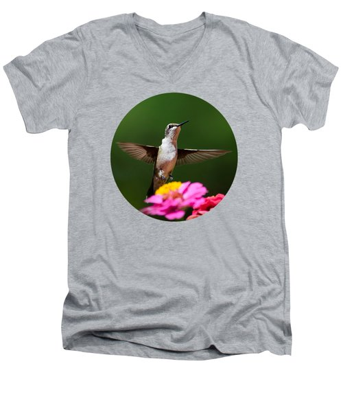 Hummingbird Men's V-Neck T-Shirt by Christina Rollo