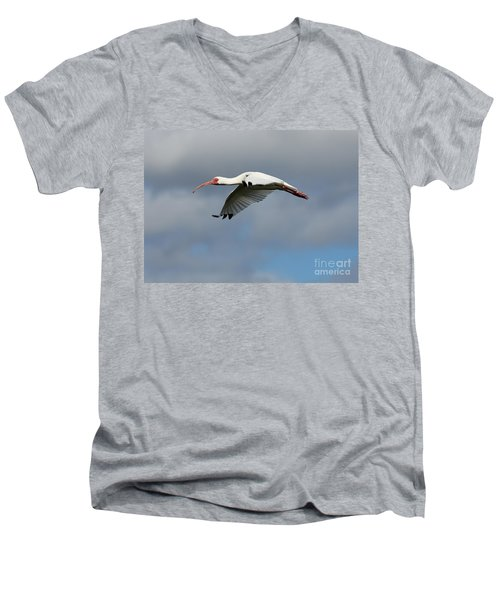 Ibis In Flight Men's V-Neck T-Shirt by Carol Groenen