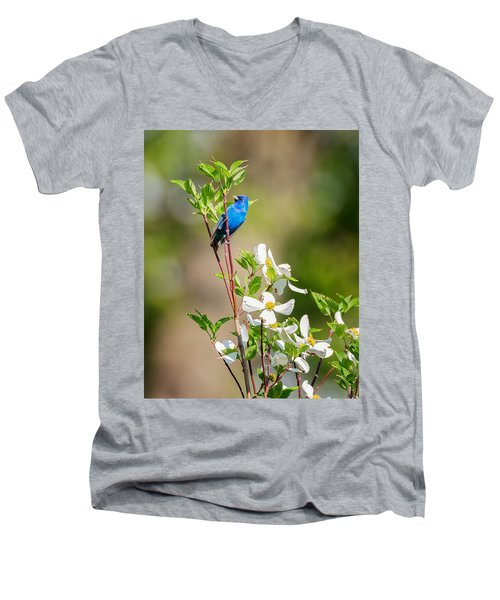 Indigo Bunting In Flowering Dogwood Men's V-Neck T-Shirt by Bill Wakeley