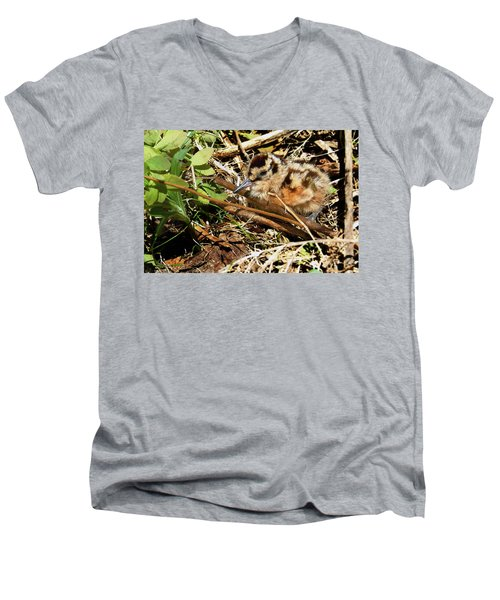 It's A Baby Woodcock Men's V-Neck T-Shirt by Asbed Iskedjian