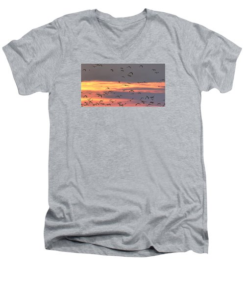 Lapwings At Sunset Men's V-Neck T-Shirt by Jeff Townsend