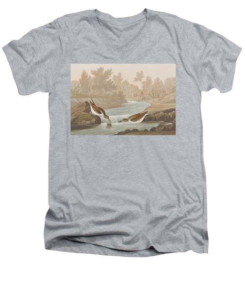 Little Sandpiper Men's V-Neck T-Shirt by John James Audubon