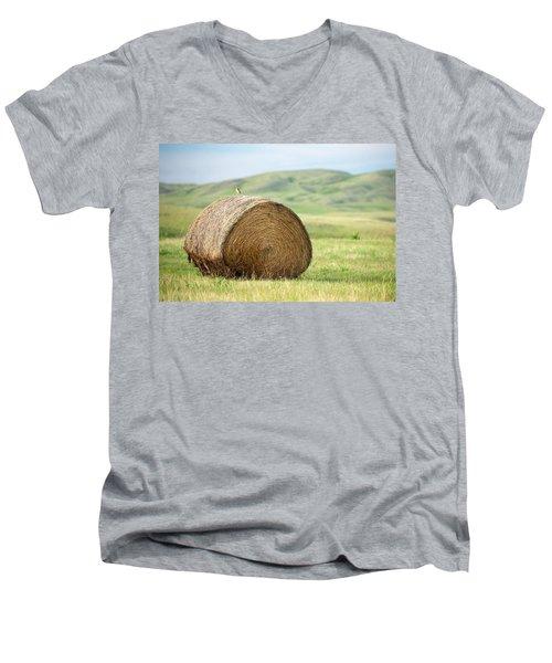 Meadowlark Heaven Men's V-Neck T-Shirt by Todd Klassy