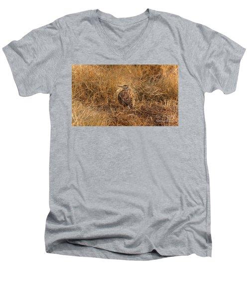 Meadowlark Hiding In Grass Men's V-Neck T-Shirt by Robert Frederick