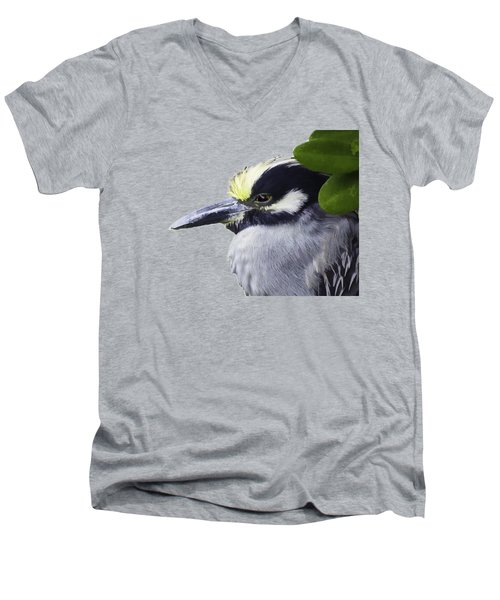 Night Heron Transparency Men's V-Neck T-Shirt by Richard Goldman