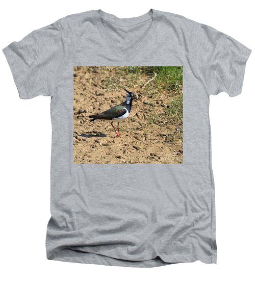 Northern Lapwing Men's V-Neck T-Shirt by Louise Heusinkveld