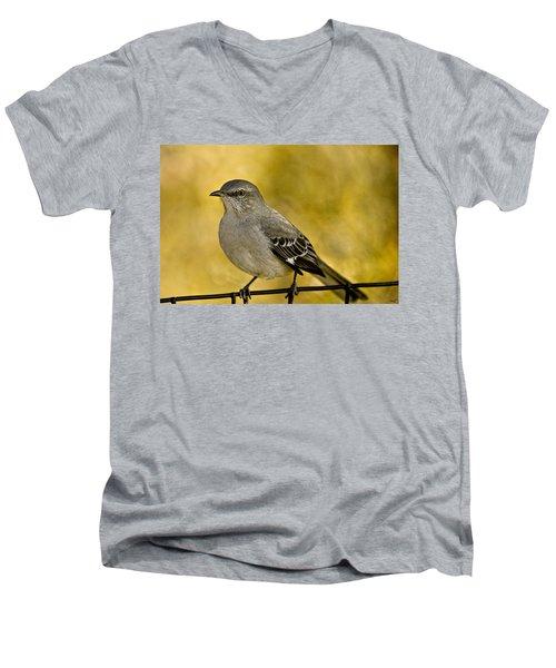 Northern Mockingbird Men's V-Neck T-Shirt by Chris Lord