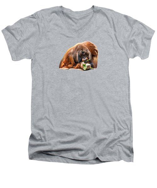 Orangutan Men's V-Neck T-Shirt by Maria Coulson