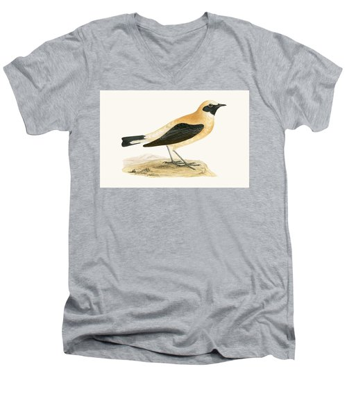 Russet Wheatear Men's V-Neck T-Shirt by English School