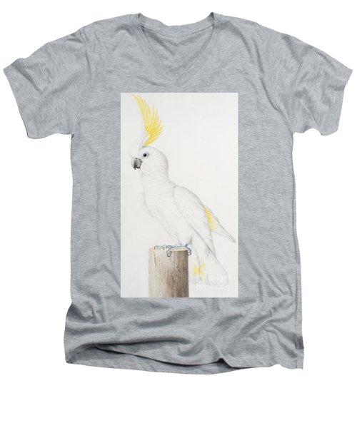 Sulphur Crested Cockatoo Men's V-Neck T-Shirt by Nicolas Robert