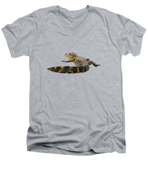 Sunning On The Shore Men's V-Neck T-Shirt by Zina Stromberg