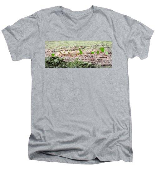 The Leaf Parade  Men's V-Neck T-Shirt by Betsy Knapp