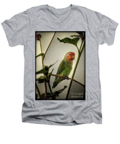 The Lovebird  Men's V-Neck T-Shirt by Saija  Lehtonen