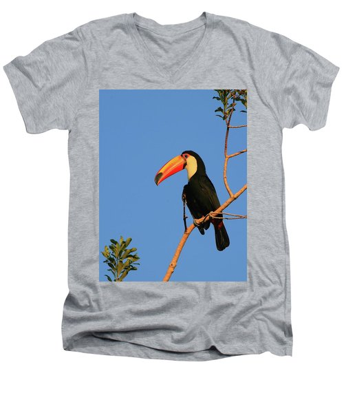 Toco Toucan Men's V-Neck T-Shirt by Bruce J Robinson