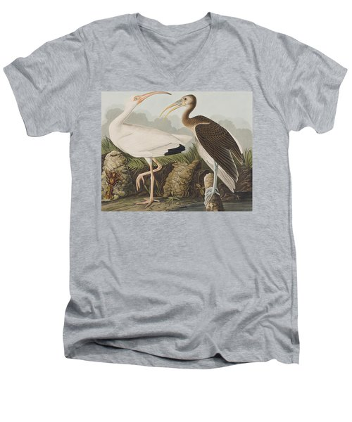 White Ibis Men's V-Neck T-Shirt by John James Audubon