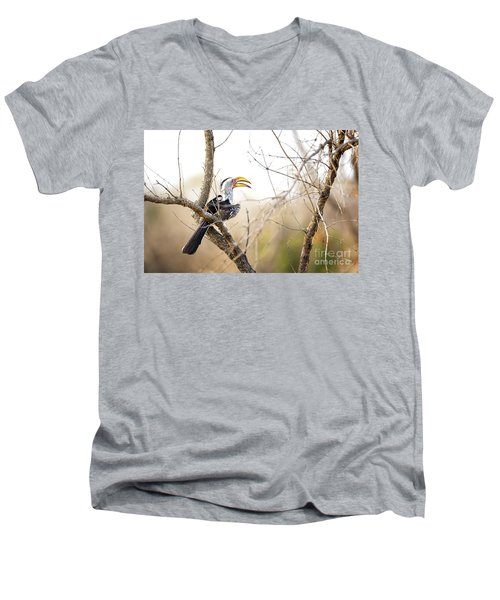Yellow-billed Hornbill Sitting In A Tree.  Men's V-Neck T-Shirt by Jane Rix