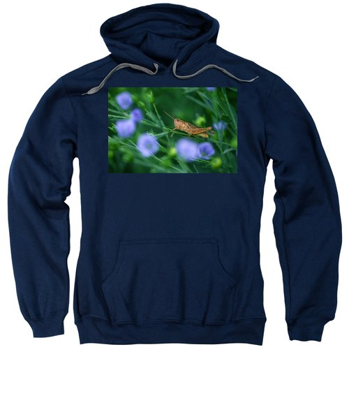 Grasshopper Sweatshirt by Mike Grandmailson