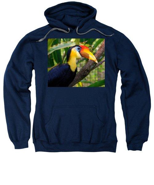 Wrinkled Hornbill Sweatshirt by Susanne Van Hulst