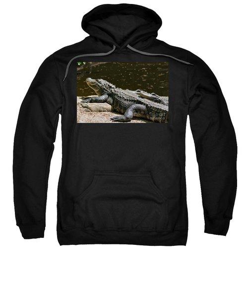 Comfy Cozy Sweatshirt by Lois Bryan