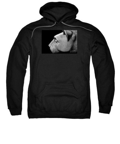 Garatti's Lion Sweatshirt by Tom Gari Gallery-Three-Photography