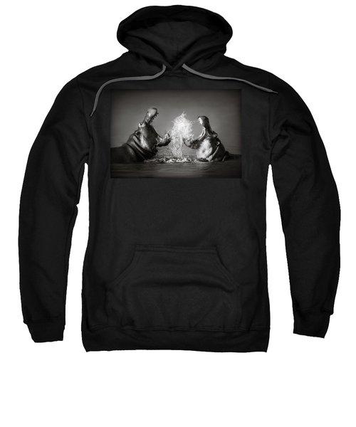 Hippo's Fighting Sweatshirt by Johan Swanepoel
