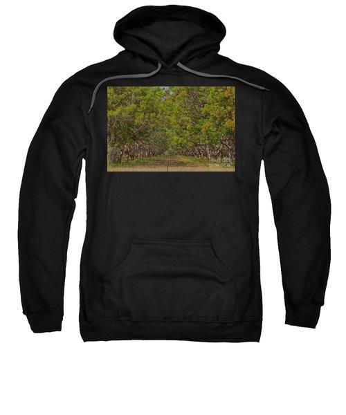 Mango Orchard Sweatshirt by Douglas Barnard