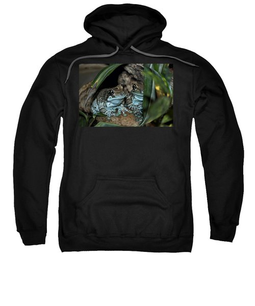 Poisonous Frogs With Sticky Feet Sweatshirt by Thomas Woolworth
