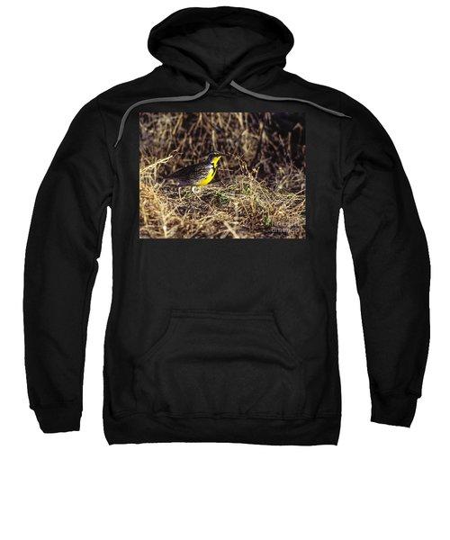 Western Meadowlark Sweatshirt by Steven Ralser